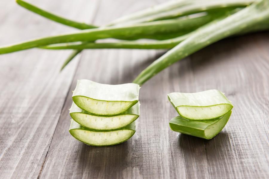 Aloes - najciekawsze właściwości zdrowotne