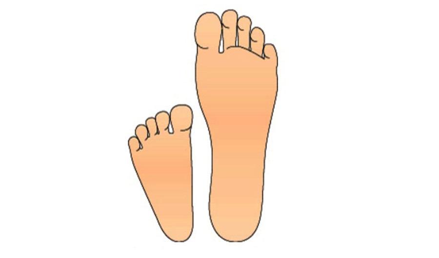 Stopa dziecka i stopa dorosłego - porównanie - Sklep z butami dla maluchów Bosa Stópka