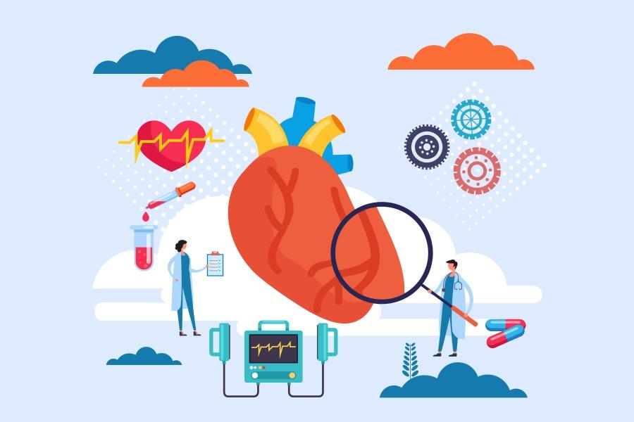 Rysunkowi lekarze badają mięsień sercowy, diagnozując chorobę niedokrwienną serca.