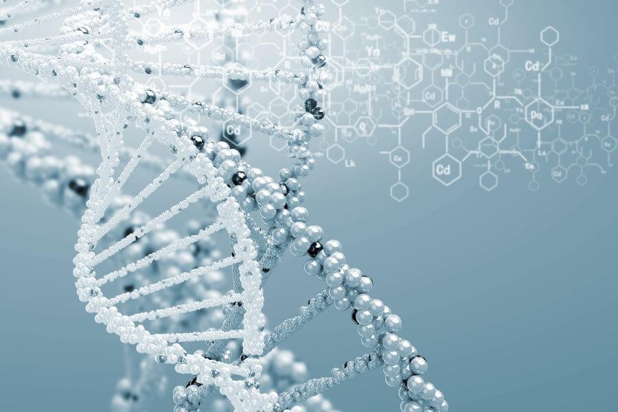 Model struktury DNA.