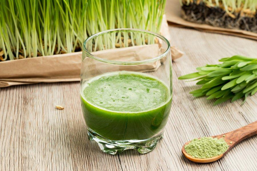 sproszkowany sok młody zielony jęczmień