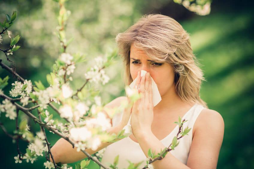 Kalendarz alergika: co pyli w kwietniu?
