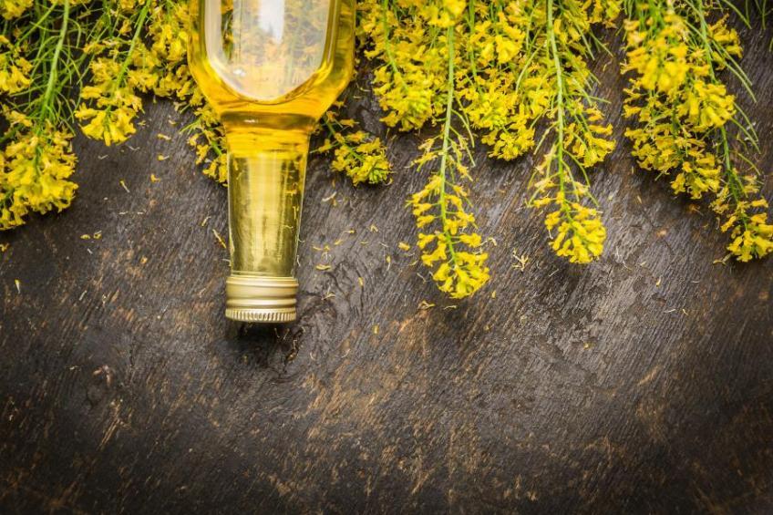 Olej rzepakowy - najważniejsze właściwości zdrowotne