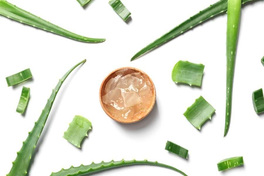 Na białym tle liście aloesu i żel aloesowy w drewnianej miseczce.