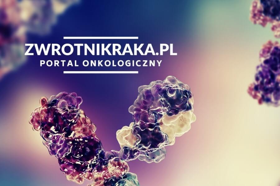 Grafika 3D z adresem do strony zwrotnikraka.pl